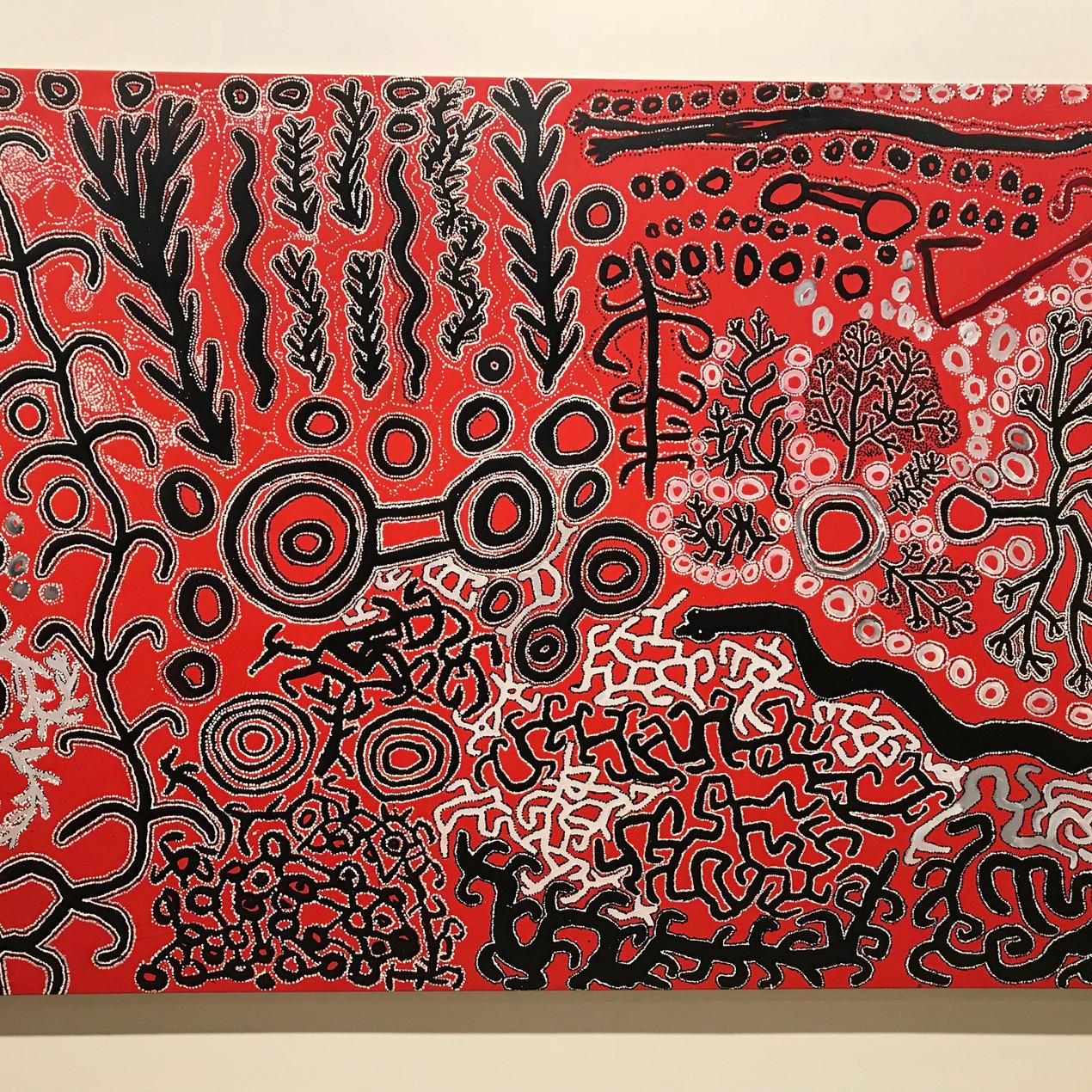 Pintupi painting at AGNSW