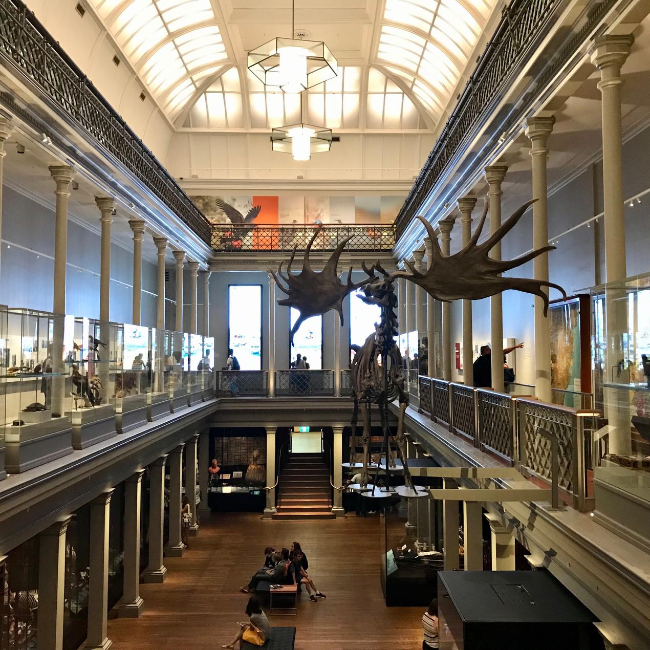 Visiting the Australian Museum