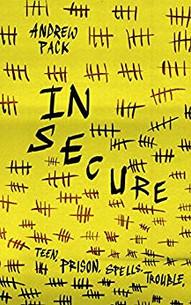 In Secure.jpg