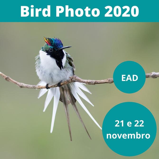 BIRD PHOTO 2020! O Maior encontro de fotografia de aves do Brasil! Última semana para as INSCRIÇÕES