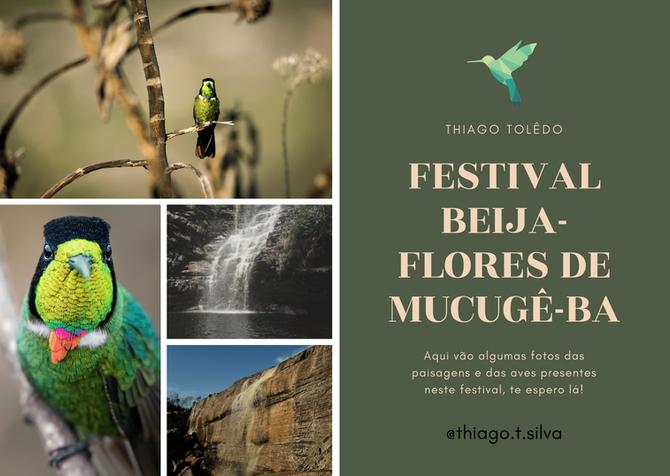 Festival Beija-Flores de Mucugê-BA THIAGO TOLÊDO 2021