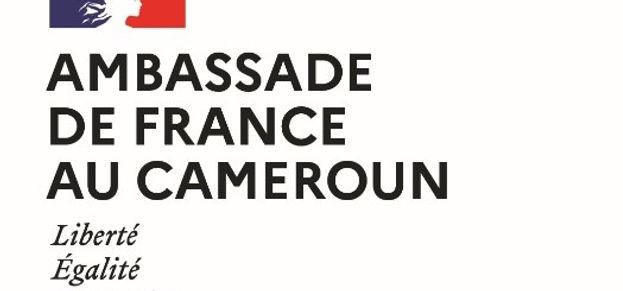 Logo Ambassade de France.jpg