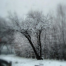 Mother Nature's winter curtain call_