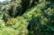 180315-DSC09899-Trek Pula-Patyay-Philipp
