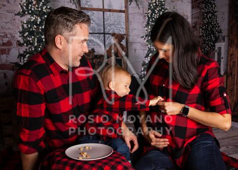 Alyssa-christmas-minis_-031.jpg