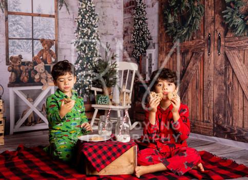 Fanny-christmas-minis033.jpg