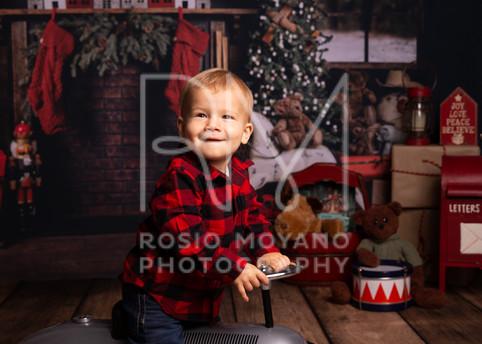 Alyssa-christmas-minis_-012.jpg