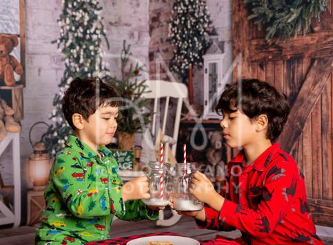 Fanny-christmas-minis037.jpg