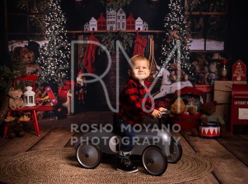Alyssa-christmas-minis_-011.jpg