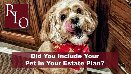 Did You Remember to Include Your Pet in Your Estate Plan?