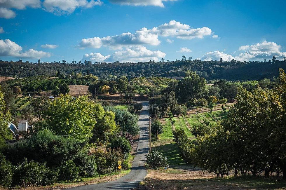 twin peaks hill.jpg