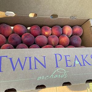 peaches%20in%20new%20box_edited.jpg