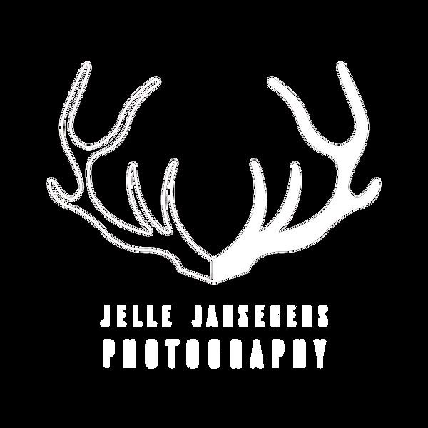 jelle jansegers 2019.png