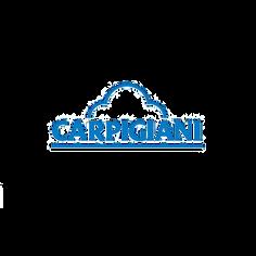carpigiani.png
