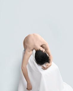 Mouche tombee - Jelle Jansegers.jpg