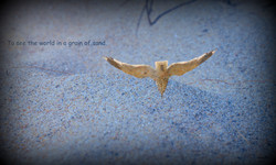 Grain of sand...
