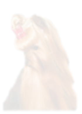 Transparent cover photo 2a.png