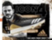 Icon 4.jpg