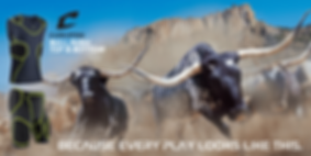 page-bottom-Bull-Rush.png