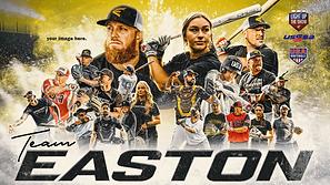Easton-Baseball.png