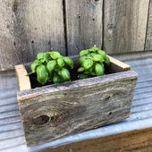 1 barnwood basil box.jpeg