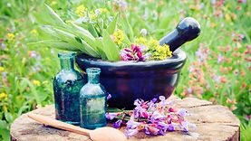 Accredited Online Herbal Medicine Course