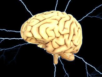brain-1845940.jpg