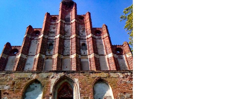 Тевтонский орден в Калининграде