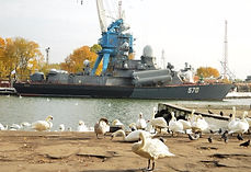Туры в Балтийск - Слава российского флота