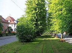 Пешеходные экскурсии по Калининграду. Районы Кенигсберга. Марауненхоф