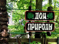 Музеи Калининграда и Калининградской области. Музей кошек Мурариум в Зеленоградске