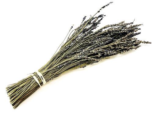 Lavender Whole Bushels