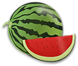 Melone Sommer.png