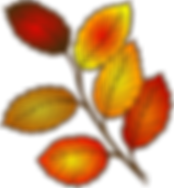 autumn-310541_960_720.png