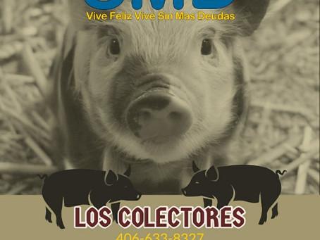 Los colectores, colecciones, que son? Como funcionan, que tipos de colectores hay?