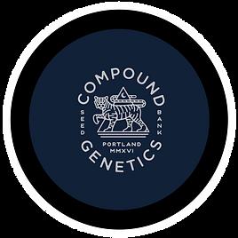 compound button.png