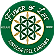 Flower-of-life-Logo-Thumb.png