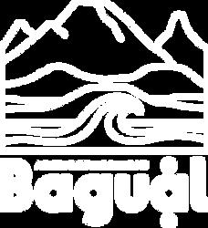 bagual.png