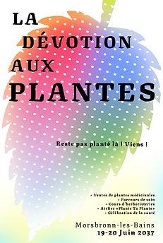 la dévotion aux plantes 2037.jpg