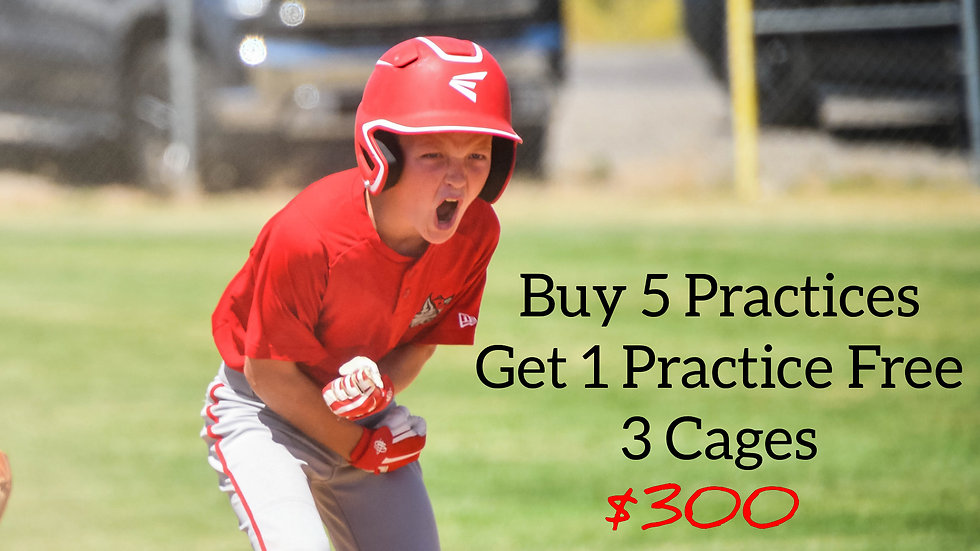 Buy 5 Practices get 1 Free - 3 Cages