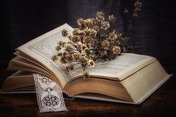 book-6037943_1920.jpg