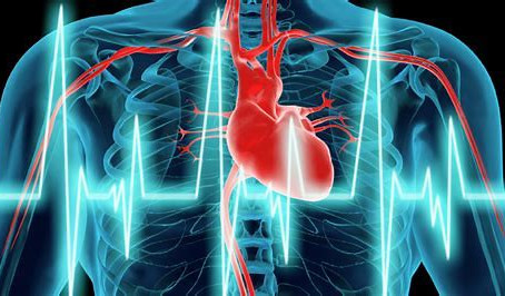 What is Heart Rate Variability(HRV)?
