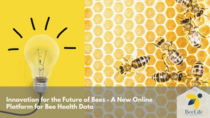 Innovation for the Future of Bees
