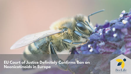 EU Court of Justice Definitely Confirms Ban on Neonicotinoids in Europe