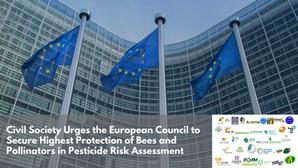 La sociedad civil insta al Consejo de la UE a garantizar la máxima protección de los polinizadores