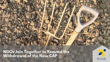 NGOs Join Together to Request the Withdrawal of the New CAP