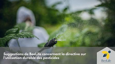 Suggestions de BeeLife concernant la directive sur l'utilisation durable des pesticides