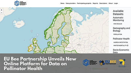 EU Bee Partnership Unveils New Online Platform for Data on Pollinator Health