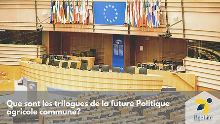 Que sont les trilogues de la future Politique agricole commune?
