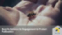 Cover - Article - BeeLife Renews Engagem